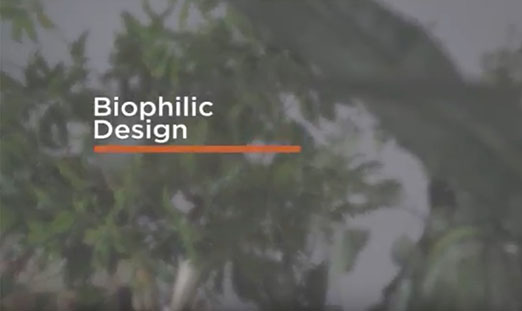 Aspecta In the Studio Biophilic Design in Aspecta One Ornamental