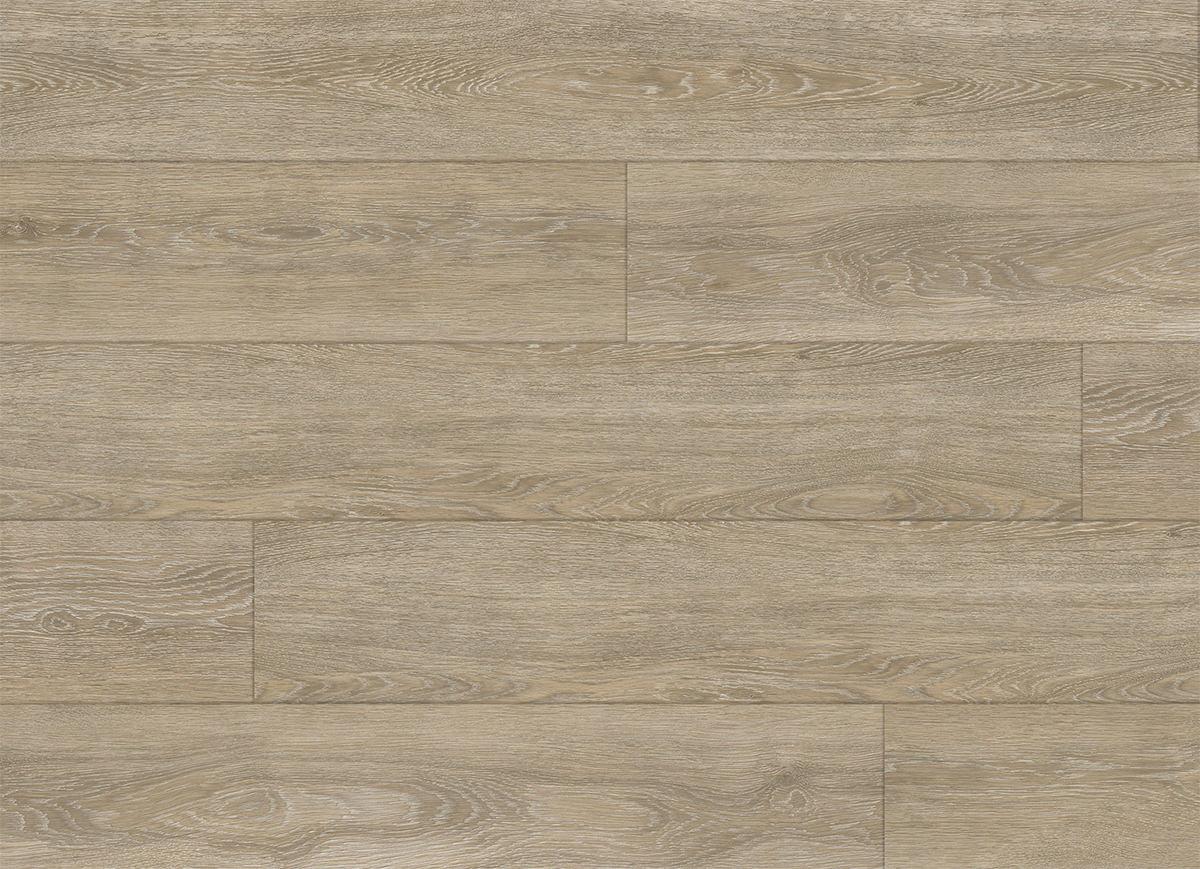 campione Iceland Pine Stone a grandezza naturale