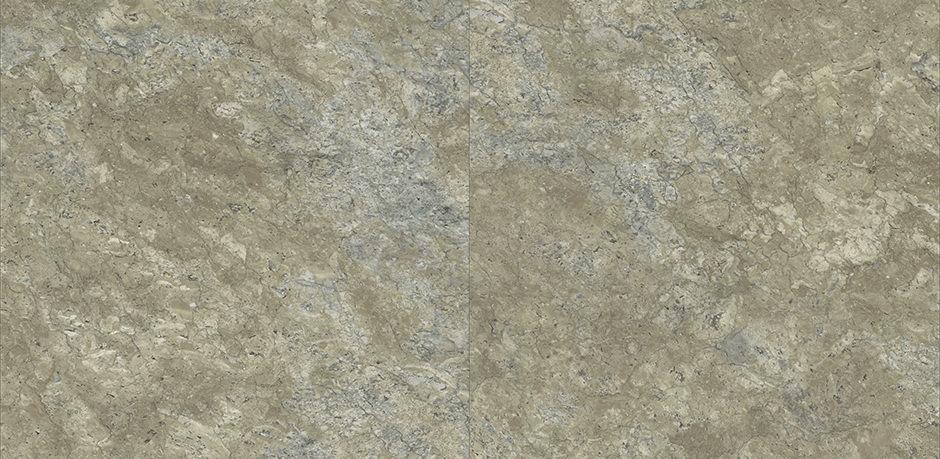 Afbeelding Pyrite Lichen