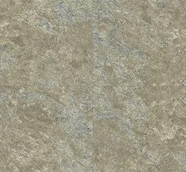 muestra de Pyrite Lichen