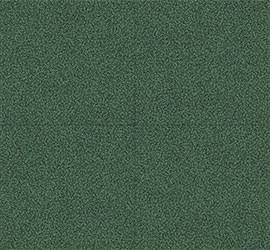 Fracas Green muestra
