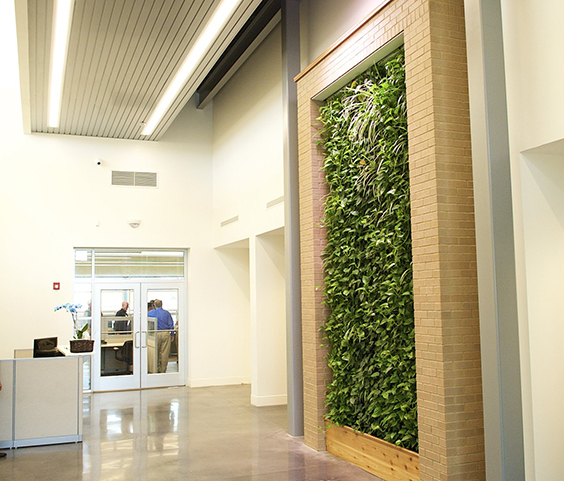 Groene wand in kantoorgebouw